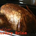 Best Ever Turkey Brine