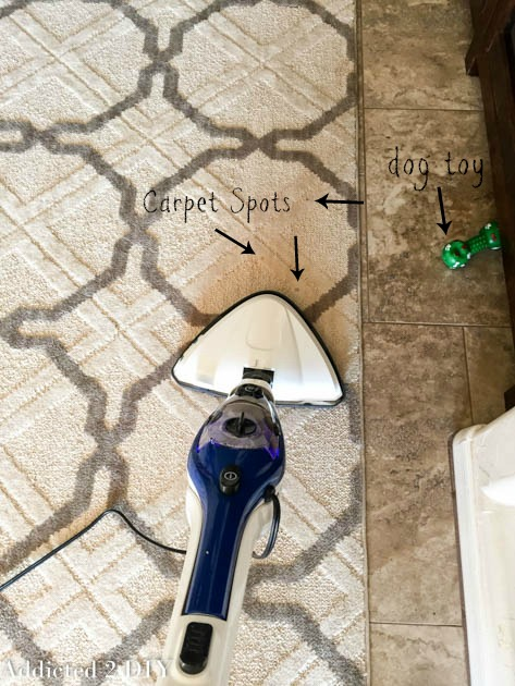 chemical-free-carpet-cleaning