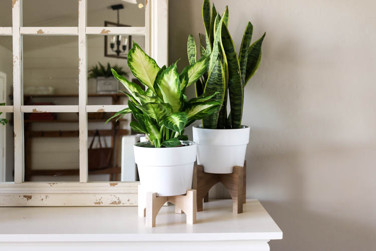 Learn how to make wooden plant stands